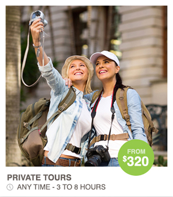 Private or Personalised Sightseeing Tours - Walk Brisbane